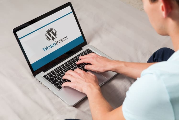 wordpress-developer